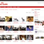 Royal Canin - Ning Community Site